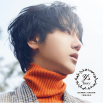 Super Junior's Yesung drops MV for 'Because I Love You'