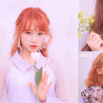 IZ*ONE release image teasers for members Sakura, Chaewon and Chaeyeon!