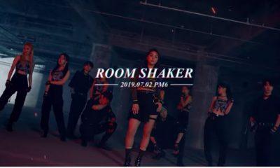 Ailee_room shaker