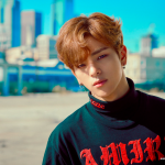 Woojin announces departure from Stray Kids + group postpones comeback